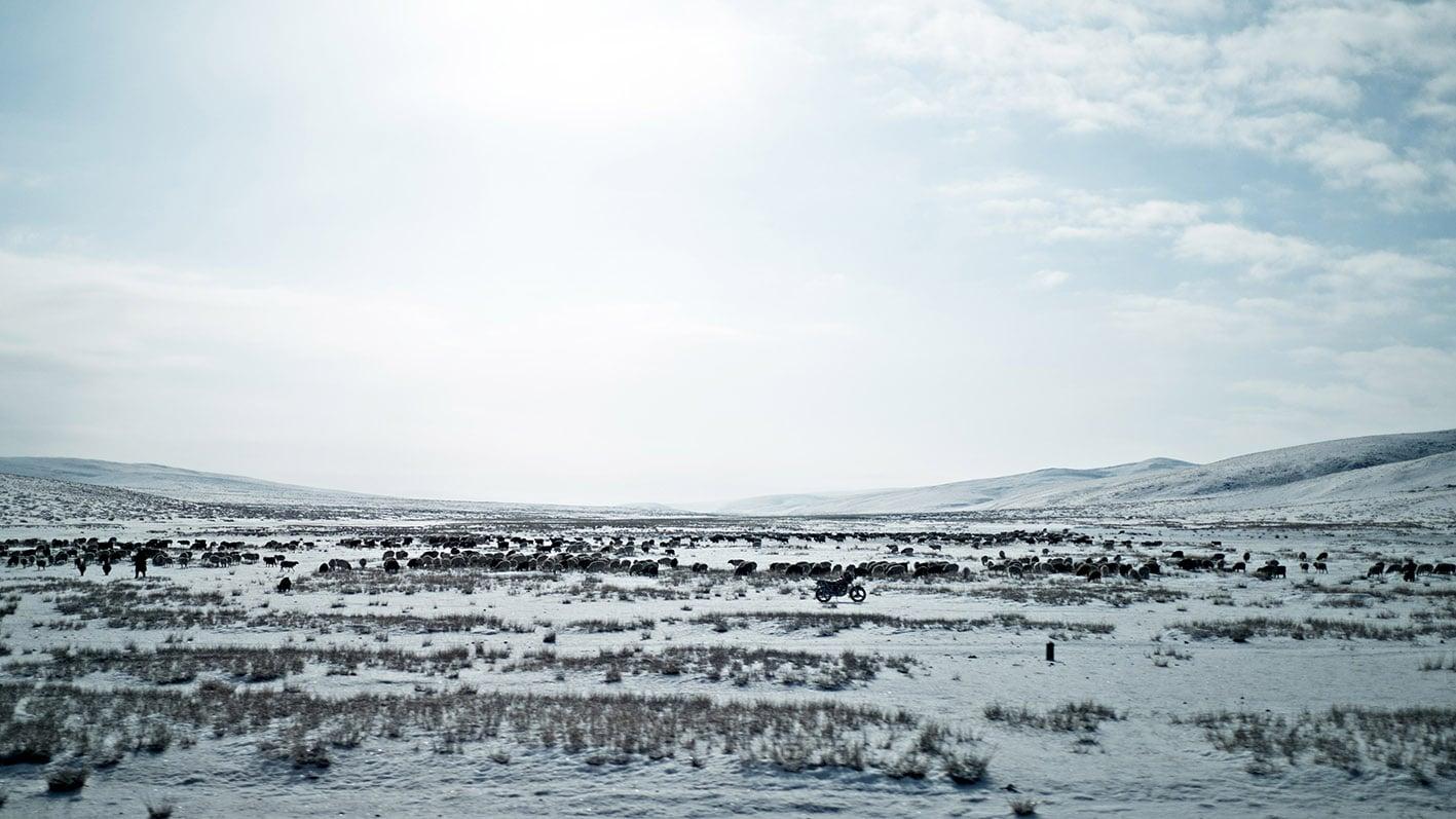 vallee de l'Orkhon